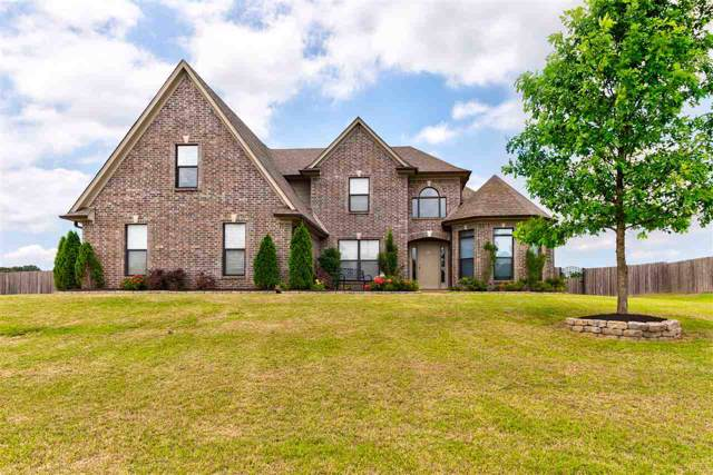 3841 E Mitchell's Corner Rd, Olive Branch, MS 38654 (#10065950) :: All Stars Realty