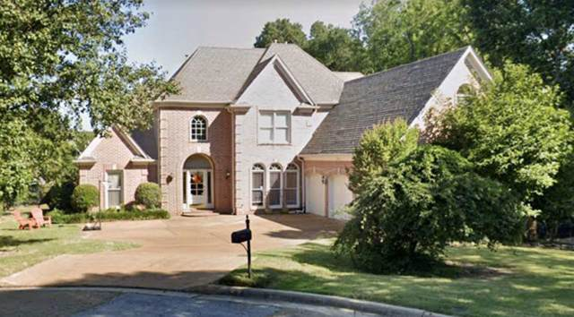 8954 Cedar Hollow Cv, Memphis, TN 38016 (#10066271) :: The Wallace Group - RE/MAX On Point