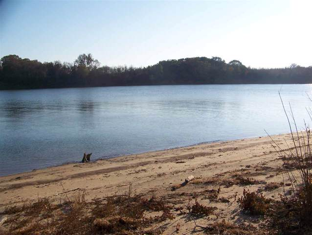 101 Sandy Ln, Crump, TN 38327 (#10066330) :: The Wallace Group - RE/MAX On Point