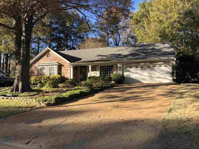 496 Rutledge Cv, Collierville, TN 38017 (#10066453) :: All Stars Realty