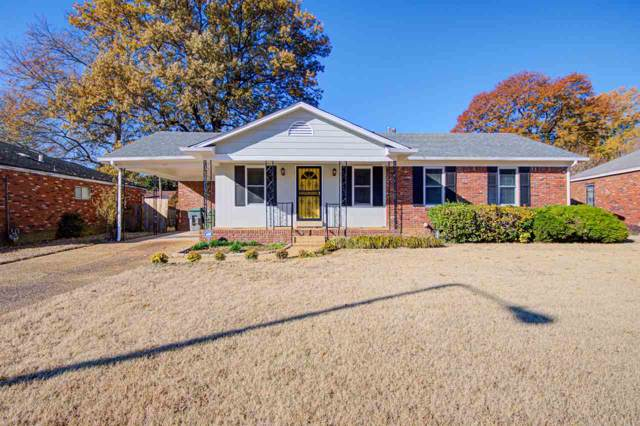 1551 Pinecrest Dr, Memphis, TN 38111 (#10066894) :: ReMax Experts