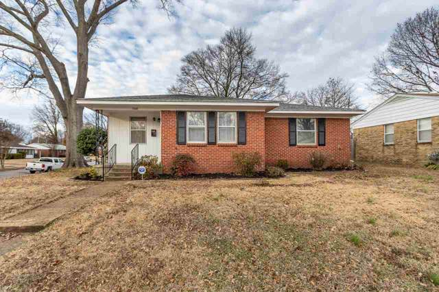 4884 Sea Isle Ave, Memphis, TN 38117 (#10067274) :: ReMax Experts