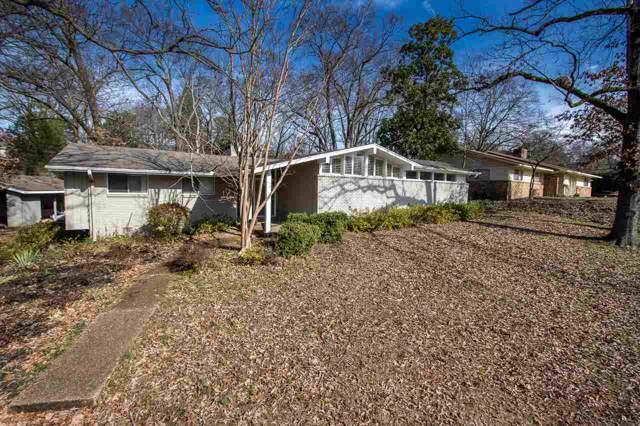 5518 Pecan Grove Ln, Memphis, TN 38120 (#10069254) :: The Wallace Group - RE/MAX On Point