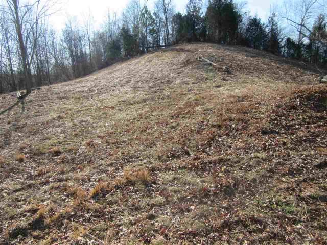 1 Woods Cliff Ln, Savannah, TN 38372 (#10069358) :: RE/MAX Real Estate Experts