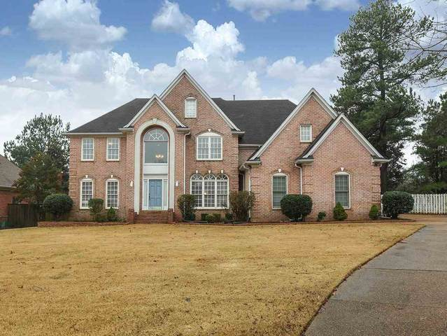 8097 Cambury Cv W, Germantown, TN 38138 (#10070994) :: The Wallace Group - RE/MAX On Point