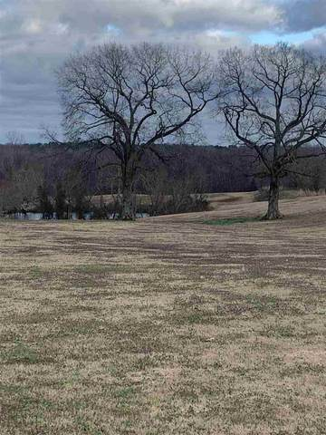 Wade Rd, Unincorporated, TN 38076 (#10071045) :: All Stars Realty