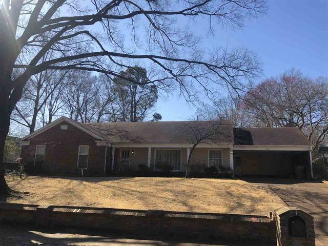 5259 Sycamore Grove Ln, Memphis, TN 38120 (#10071386) :: Bryan Realty Group