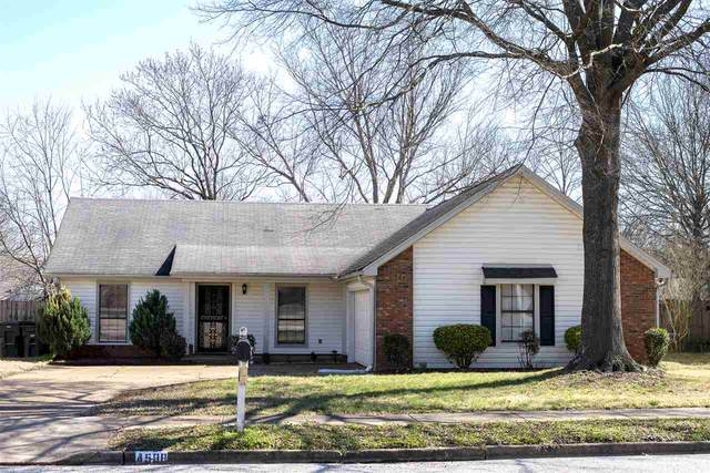 4588 Benoit St, Memphis, TN 38141 (#10071427) :: J Hunter Realty