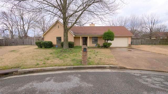 6592 Ernest Cv, Memphis, TN 38141 (#10071565) :: RE/MAX Real Estate Experts