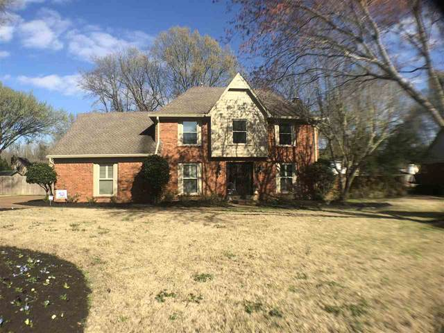 3600 Otter Creek Cv, Collierville, TN 38017 (#10073377) :: RE/MAX Real Estate Experts