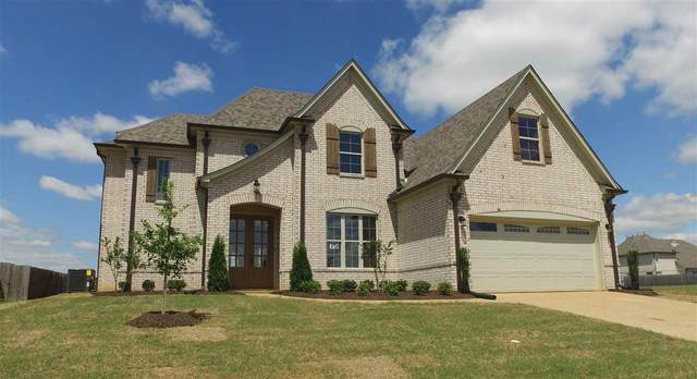 9758 Woodland Slope Dr, Cordova, TN 38016 (#10073629) :: RE/MAX Real Estate Experts