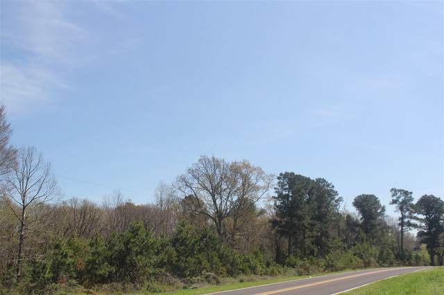 35 Old Highway 7 Hwy, Holly Springs, MS 38635 (#10073675) :: The Melissa Thompson Team