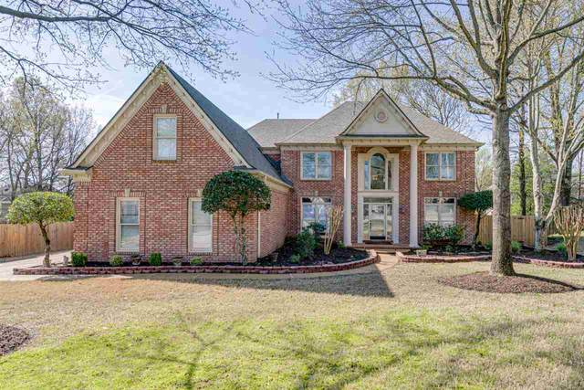 935 Hardwood View Cv, Collierville, TN 38017 (#10073679) :: ReMax Experts