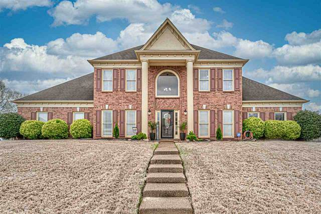 8123 Cale Falls Ln, Bartlett, TN 38002 (#10073774) :: The Melissa Thompson Team