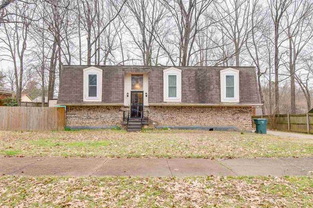 5214 Banbury Ave, Memphis, TN 38135 (#10073802) :: The Wallace Group - RE/MAX On Point