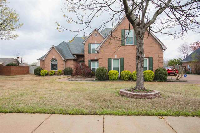 1295 Riding Brook Dr, Collierville, TN 38017 (#10073803) :: The Wallace Group - RE/MAX On Point