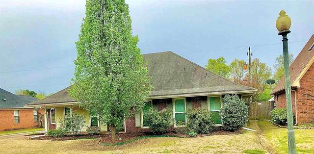 8205 S Creekside Cir, Memphis, TN 38016 (#10073857) :: The Wallace Group - RE/MAX On Point
