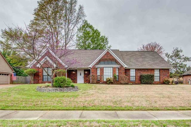 5033 Springtree Dr, Bartlett, TN 38002 (#10073863) :: The Wallace Group - RE/MAX On Point