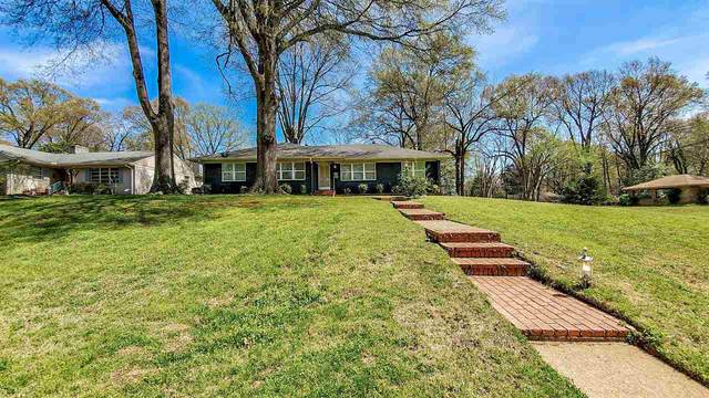 1010 Kings Park Rd, Memphis, TN 38117 (#10073868) :: The Wallace Group - RE/MAX On Point