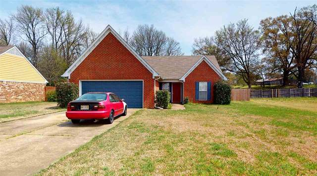 9084 Kirkwood Ln, Southaven, MS 38671 (#10073893) :: The Melissa Thompson Team