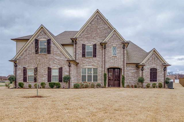 5023 Goswell Cv, Olive Branch, MS 38654 (#10073944) :: The Melissa Thompson Team