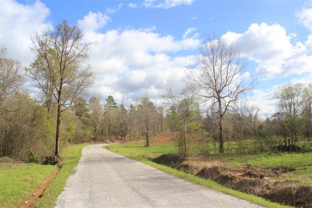 2700 Musgray Rd, Waterford, MS 38685 (#10073952) :: All Stars Realty