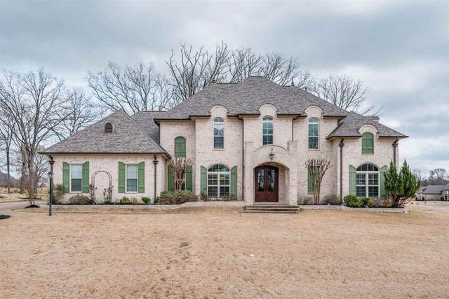 5606 Liles Ln, Olive Branch, MS 38654 (#10073963) :: The Melissa Thompson Team
