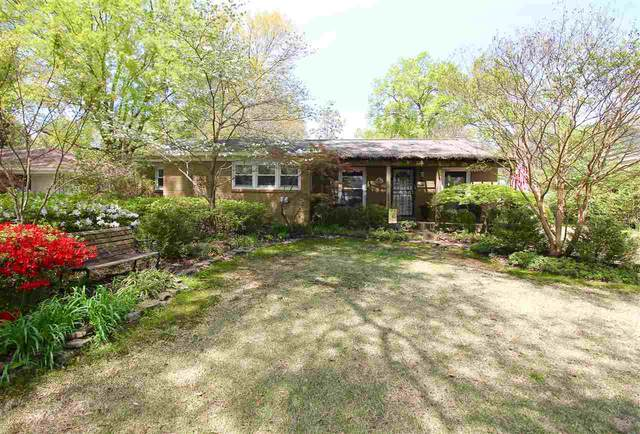 5488 Murff Ave, Memphis, TN 38119 (#10073994) :: RE/MAX Real Estate Experts