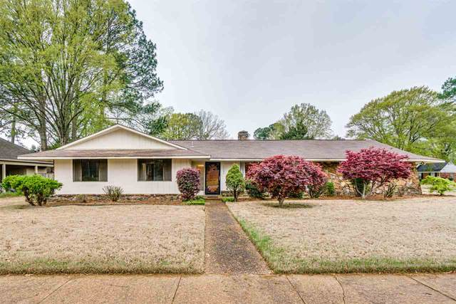 2385 Syon Dr, Memphis, TN 38119 (#10074096) :: The Wallace Group - RE/MAX On Point