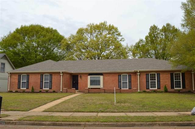3765 Birchvale Dr, Memphis, TN 38125 (#10074159) :: J Hunter Realty