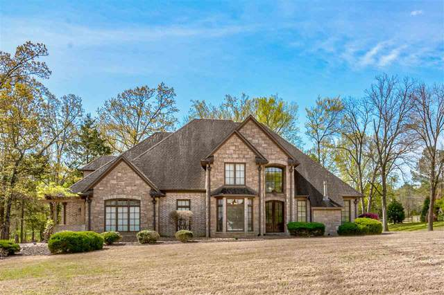30 Allenby Dr, Unincorporated, TN 38002 (#10074183) :: ReMax Experts