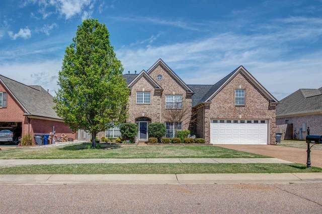 10224 Mays Glade Dr, Lakeland, TN 38002 (#10074246) :: RE/MAX Real Estate Experts