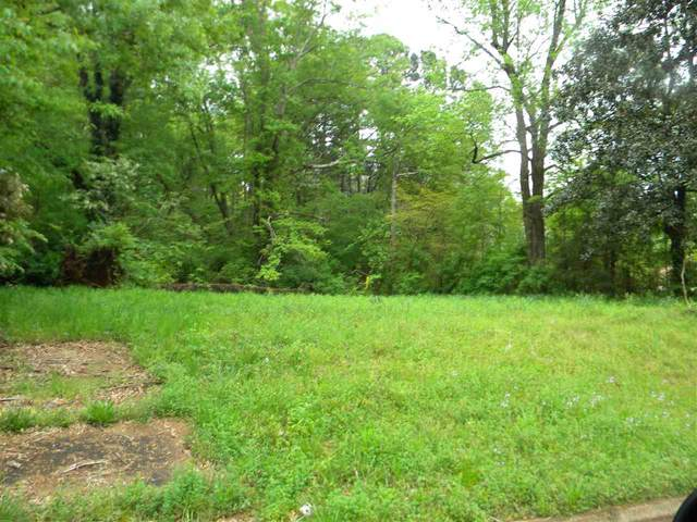 11 City Limit Lots St, New Albany, MS 38652 (#10074455) :: All Stars Realty