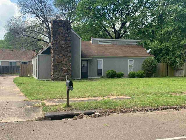 3603 Old Brownsville Rd, Memphis, TN 38135 (#10075017) :: The Wallace Group - RE/MAX On Point
