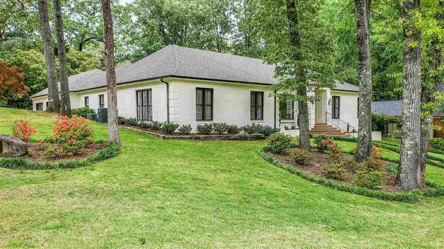 2501 Cedar Dale Dr, Germantown, TN 38139 (#10075704) :: RE/MAX Real Estate Experts