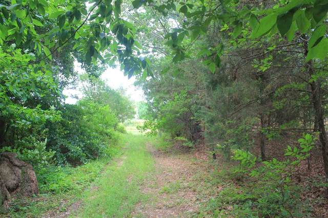 3760 Highway 310 Rd, Waterford, MS 38685 (#10076204) :: All Stars Realty