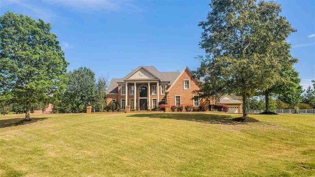 342 Southmill Dr, Eads, TN 38028 (#10076264) :: All Stars Realty