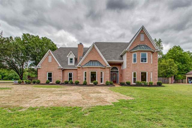 2510 Dibrell Trail Dr, Collierville, TN 38017 (#10076936) :: RE/MAX Real Estate Experts