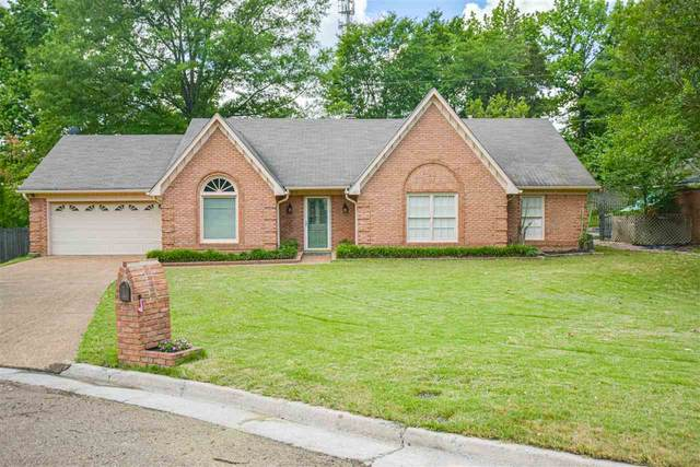 401 Locust Grove Dr, Memphis, TN 38018 (#10077049) :: The Melissa Thompson Team