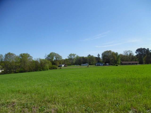 13 Old Shiloh Rd, Adamsville, TN 38310 (#10077073) :: ReMax Experts