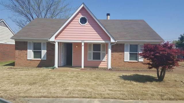 5890 Hickory Shadow Ln, Memphis, TN 38141 (#10077119) :: Bryan Realty Group