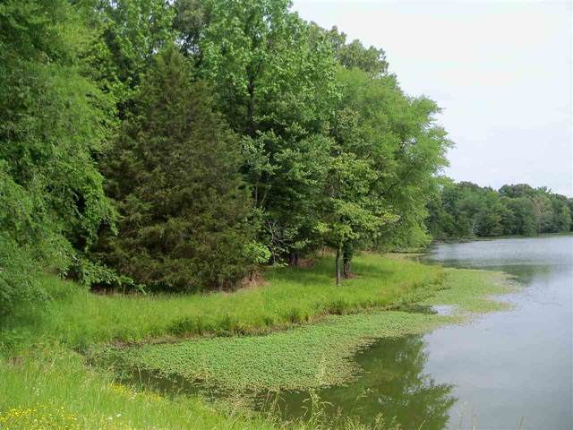 000 Pisgah Rd, Unincorporated, TN 38028 (#10077204) :: RE/MAX Real Estate Experts