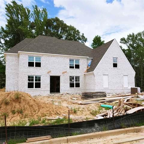 10558 Riley River Rd, Lakeland, TN 38002 (#10077318) :: ReMax Experts