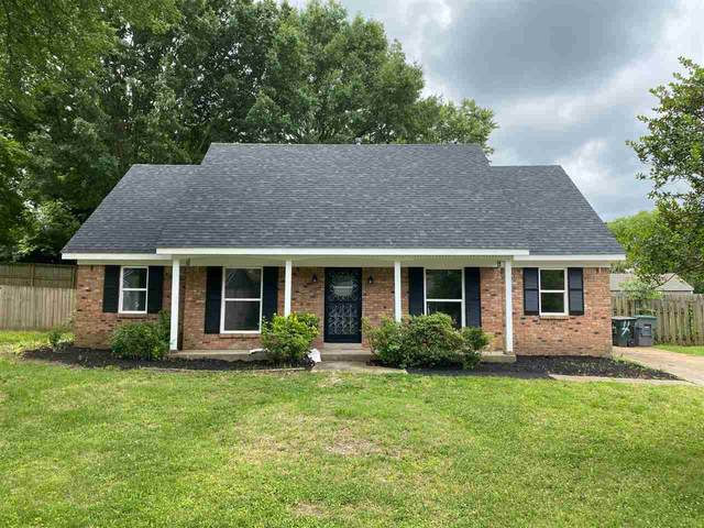 4003 Battlefield Dr, Memphis, TN 38128 (#10077333) :: All Stars Realty