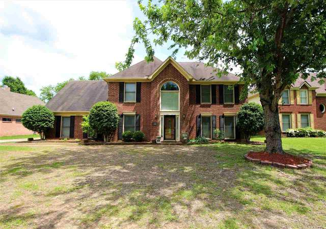 8805 Dexter Rd, Memphis, TN 38016 (#10077381) :: The Wallace Group - RE/MAX On Point