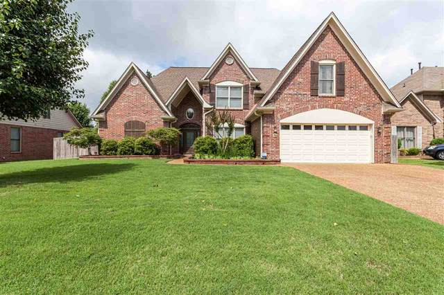 4763 Denali Park Dr, Collierville, TN 38017 (#10077511) :: All Stars Realty