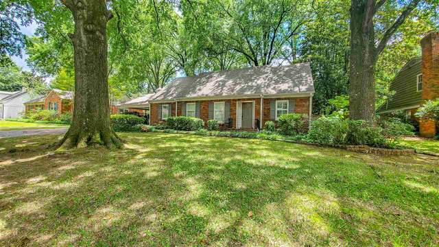 5499 Crescent Ln, Memphis, TN 38120 (#10077516) :: The Wallace Group - RE/MAX On Point