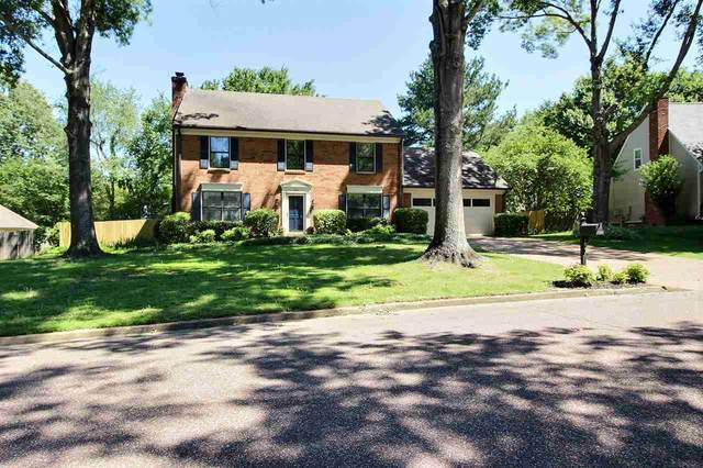 332 Powder Springs Cv, Collierville, TN 38017 (#10077579) :: The Wallace Group - RE/MAX On Point