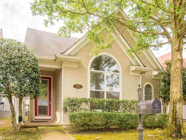 243 Island Village Dr, Memphis, TN 38103 (#10077879) :: The Wallace Group - RE/MAX On Point