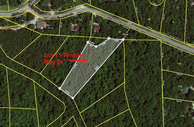 LOTS 13/14 Timber Ridge Rd, Counce, TN 38326 (#10078113) :: Bryan Realty Group